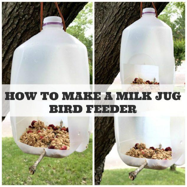 Milk Jug Bird Feeder