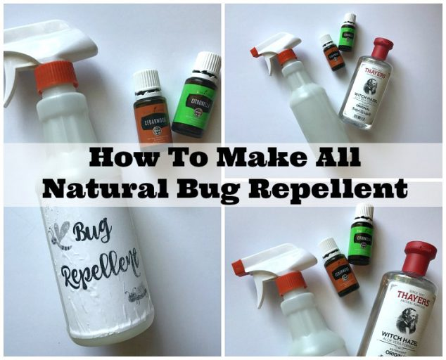 make natural insect repellent