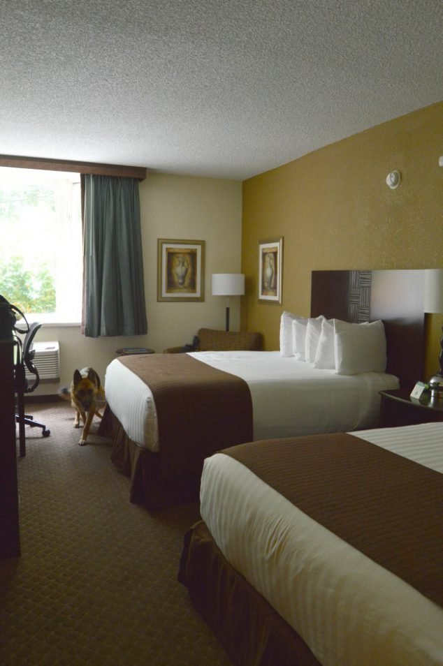 Pet Friendly Hotels In Kansas City