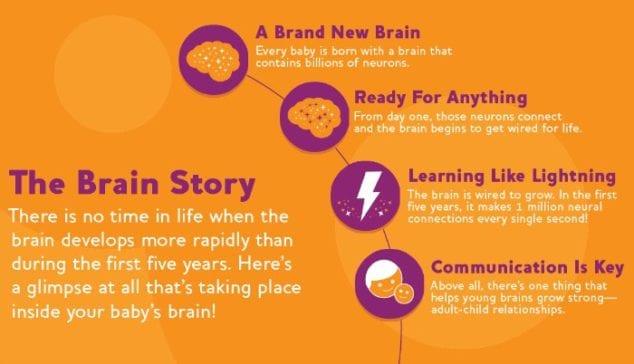 Baby Brain Story