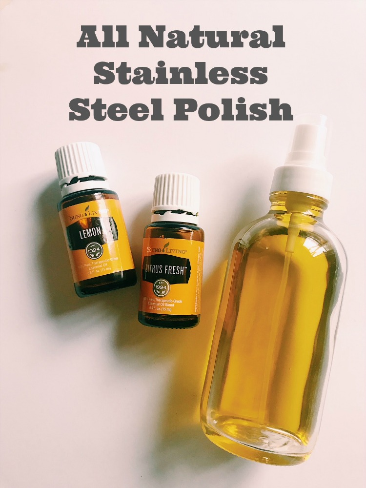 Homemade Stainless Steel Cleaner For Appliances Family