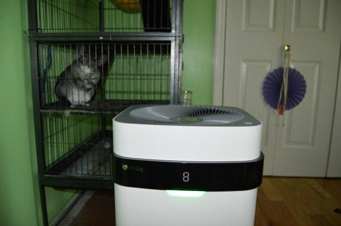 airdog air purifier review