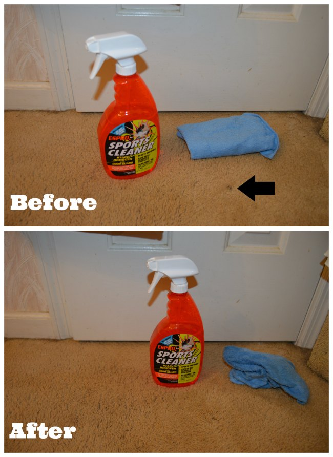 best carpet stain remover