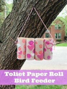 How to Make a Toilet Paper Roll Bird Feeder