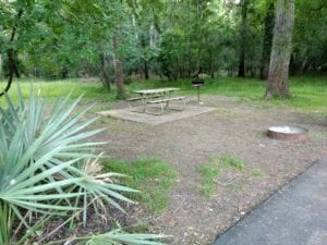 Brazos Bend State Park Camping- What You Can Expect