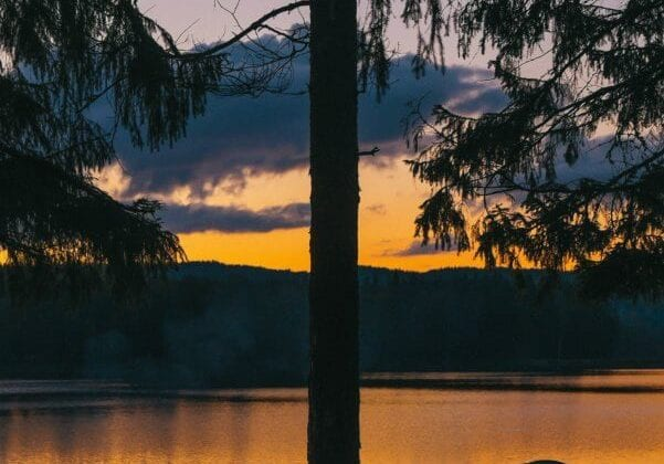 How To Go Camping- Your Complete Family Camping Trip Planner
