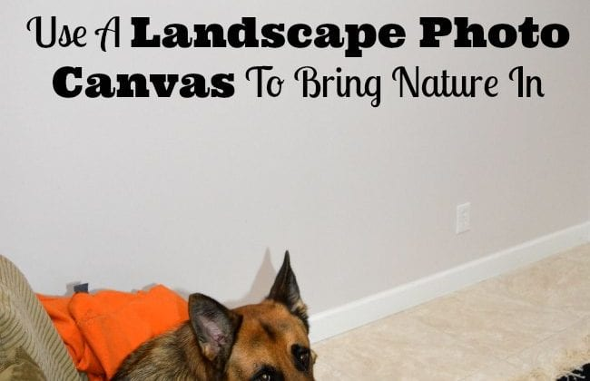 Print Photos On To Canvas With CanvasDiscount- Review And Giveaway