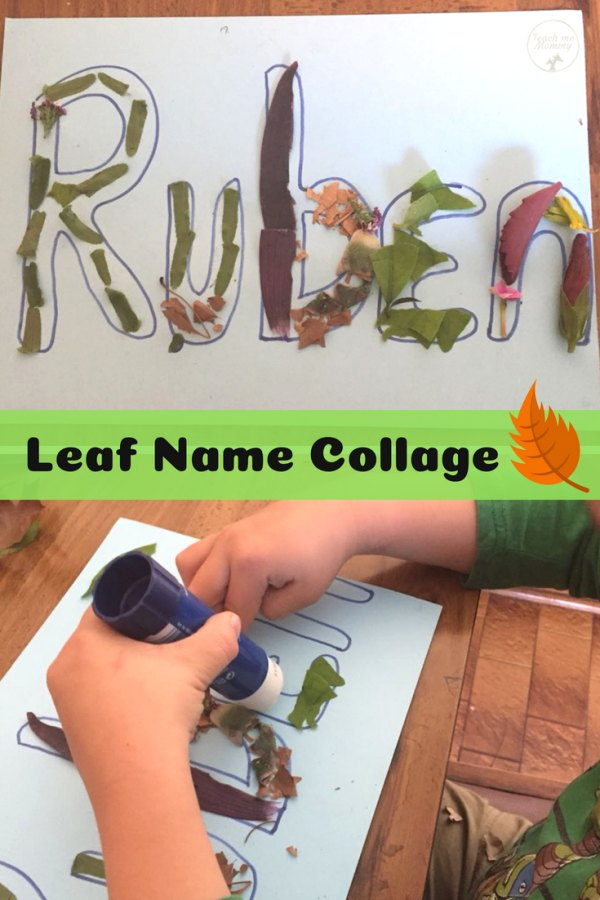 Leaf Name Collage