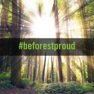 Join The #beforestproud Twitter Party! Keeping Forests As Forests