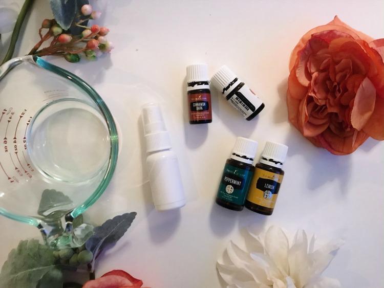 Sanitizing Spray Recipe