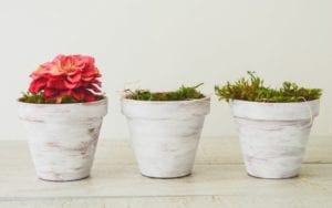 decorative planter pots- handmade mother's day gifts