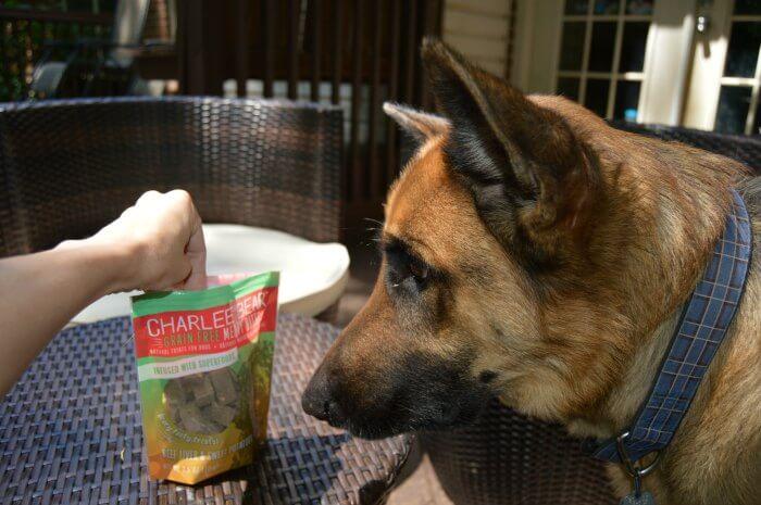 dog treats with freeze dried liver